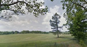 24.5 Acres on Troy-Hickman Road